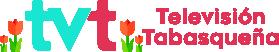 logo_tvt_mayo